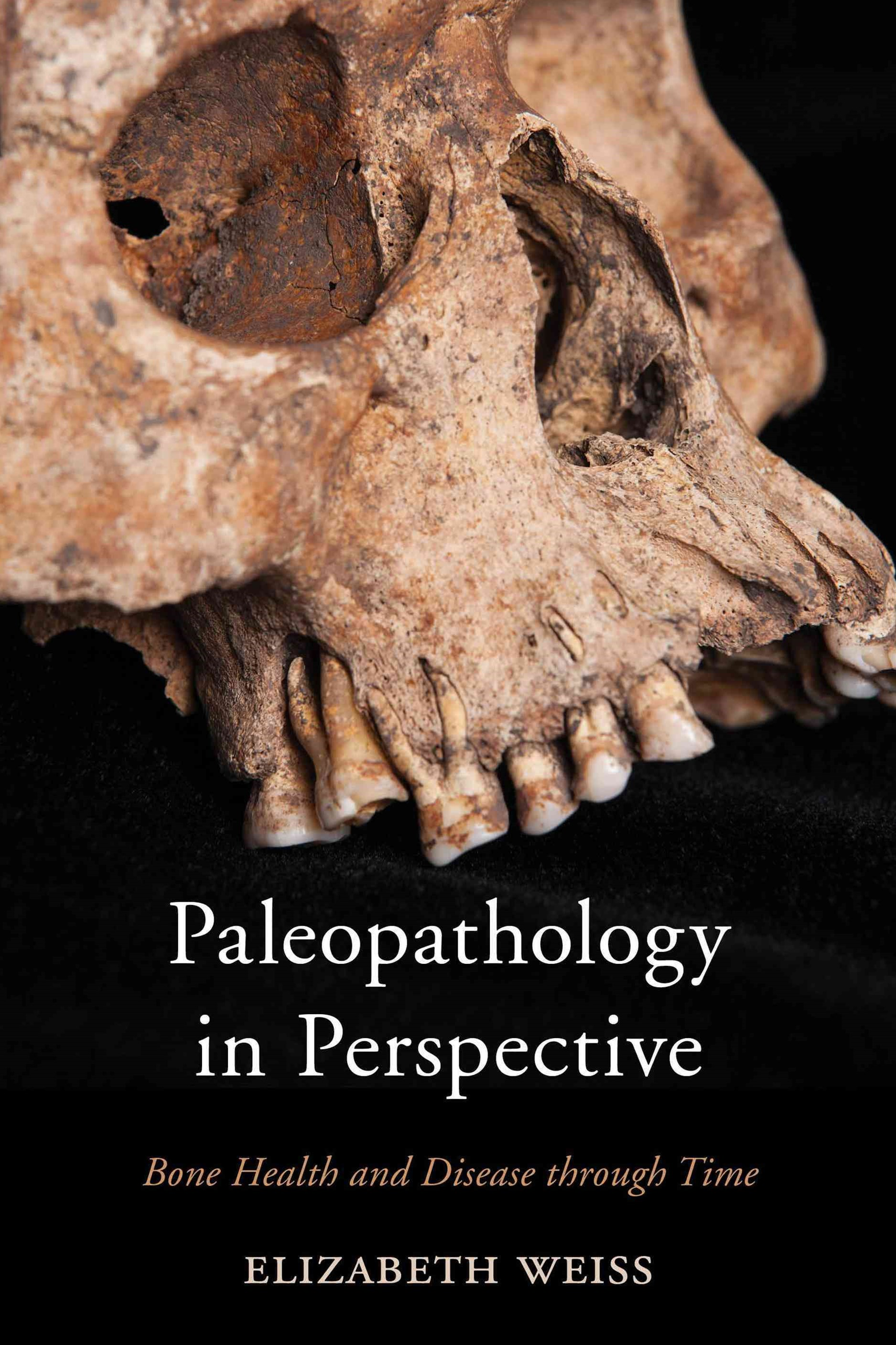 Paleopathology in Perspective