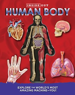 Inside Out Human Body
