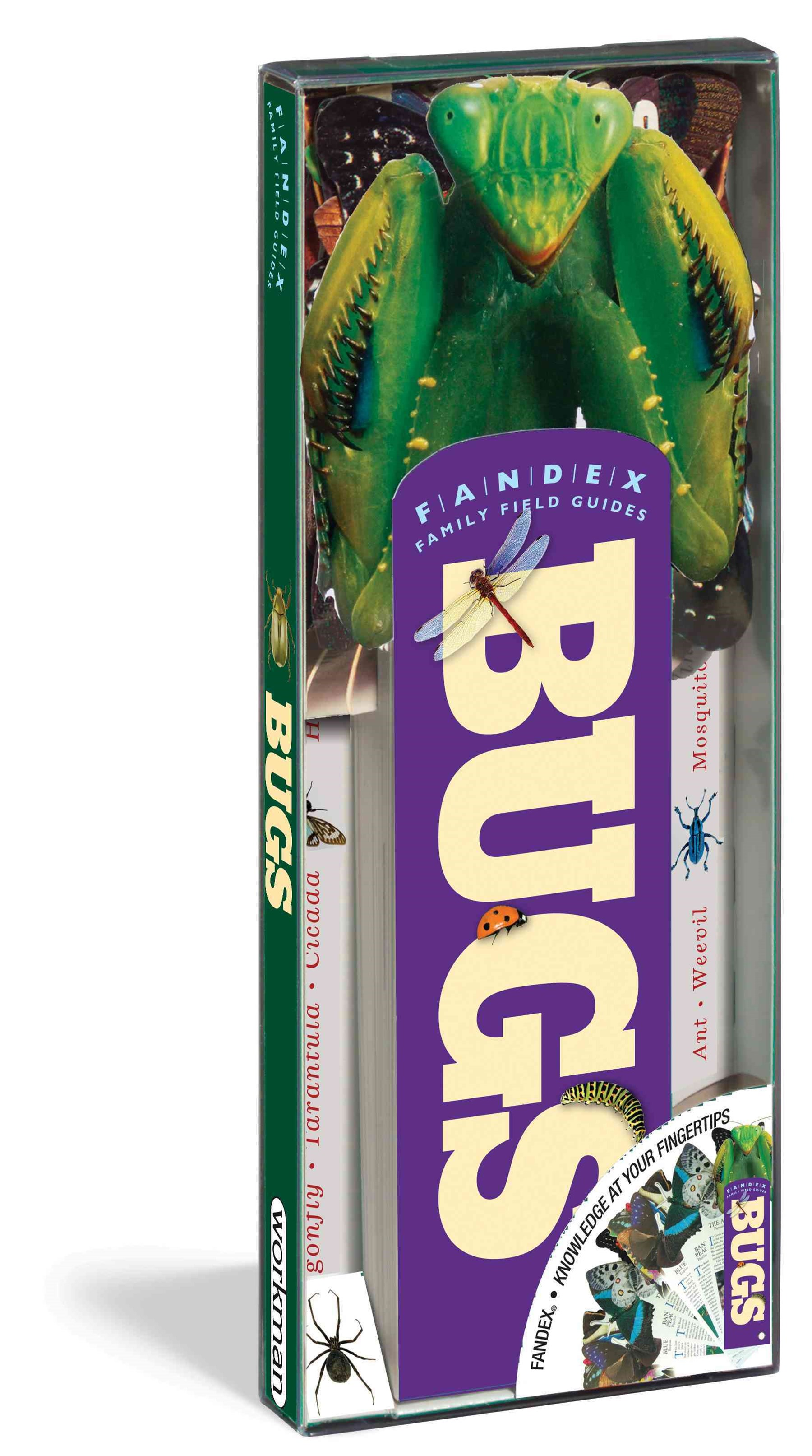 Bugs - Fandex Family Field Guides