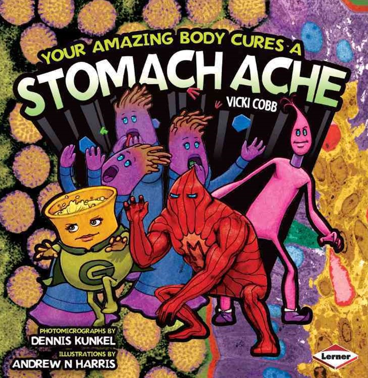 Your Amazing Body Cures a Stomach Ache