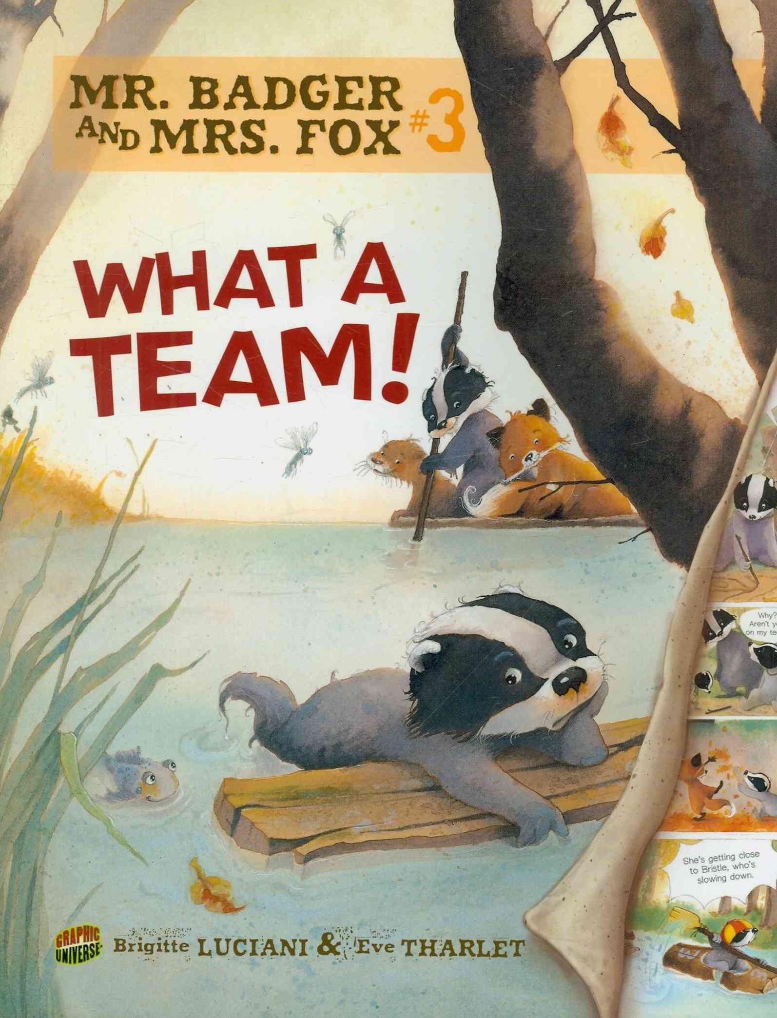 Mr Badger and Mrs Fox Book 3: What A Team