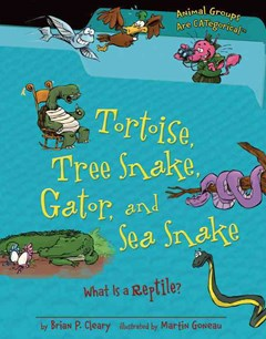 Tortoise, Tree Snake, Gator, and Sea Snake
