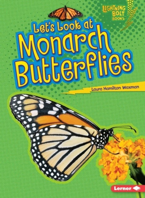 Let's Look at Monarch Butterflies