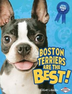 Boston Terriers Are the Best!