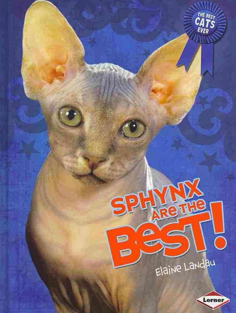 Sphynx Are the Best!