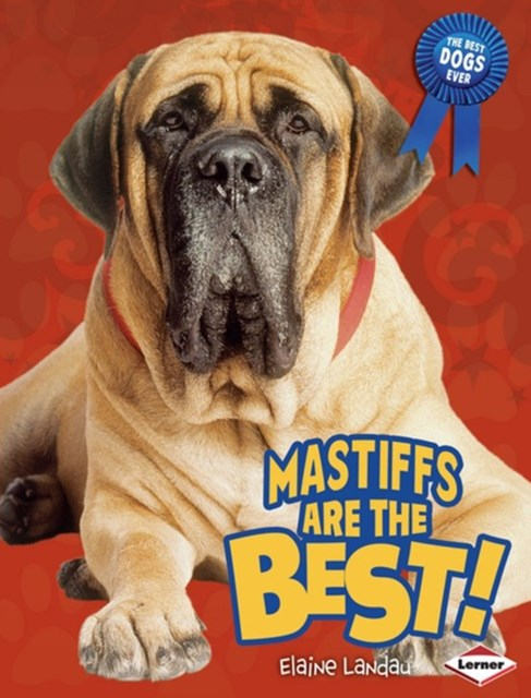 Mastiffs Are the Best!