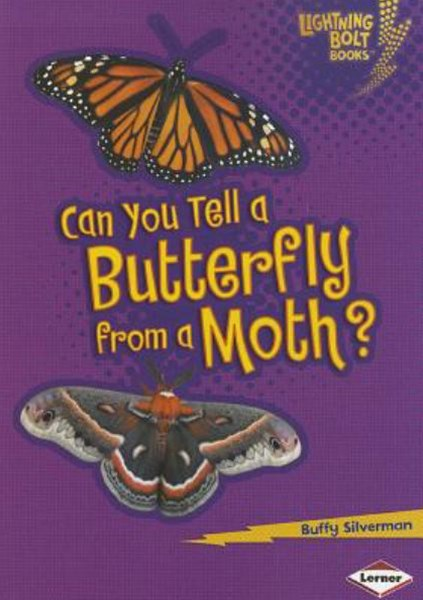 Can You Tell a Butterfly from a Moth?