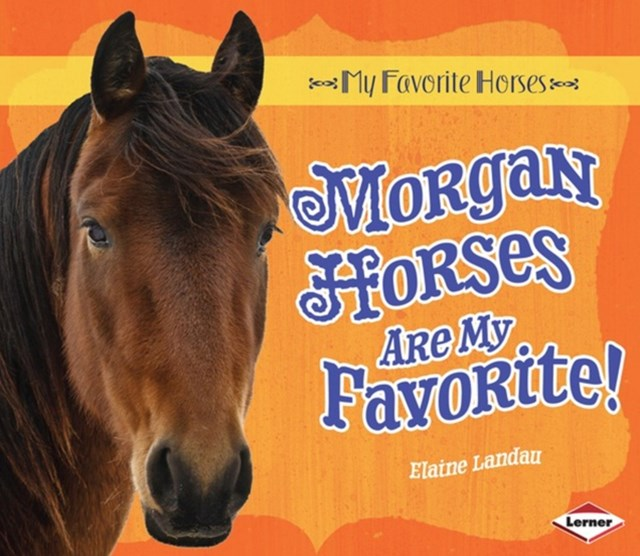 Morgan Horses Are My Favorite!