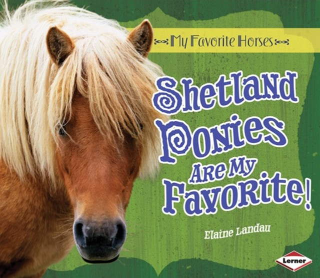 Shetland Ponies Are My Favorite!