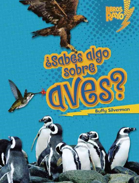 -+Sabes Algo Sobre Aves? (Do You Know about Birds?)
