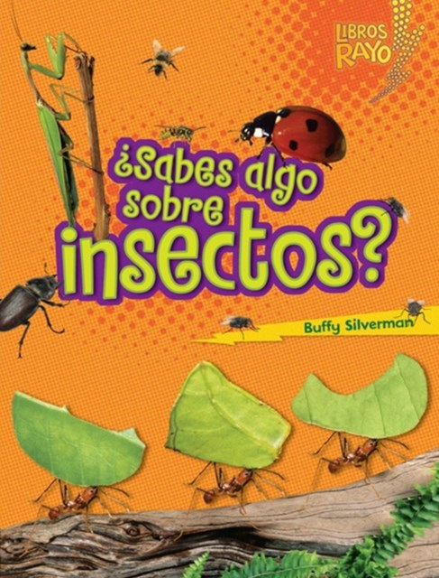 ?Sabes algo sobre insectos? (Do You Know about Insects?)