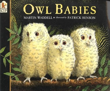 Owl Babies by Martin Waddell, Martin Waddell, Patrick Benson (9780763617103) - PaperBack - Children's Fiction Early Readers (0-4)