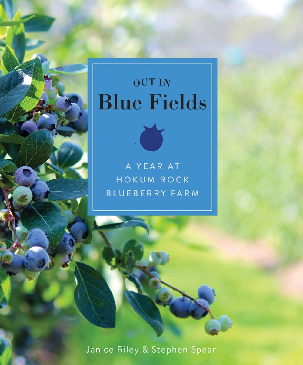 Out in the Blue Fields: A Year at Hokum Rock Bluberry Farm