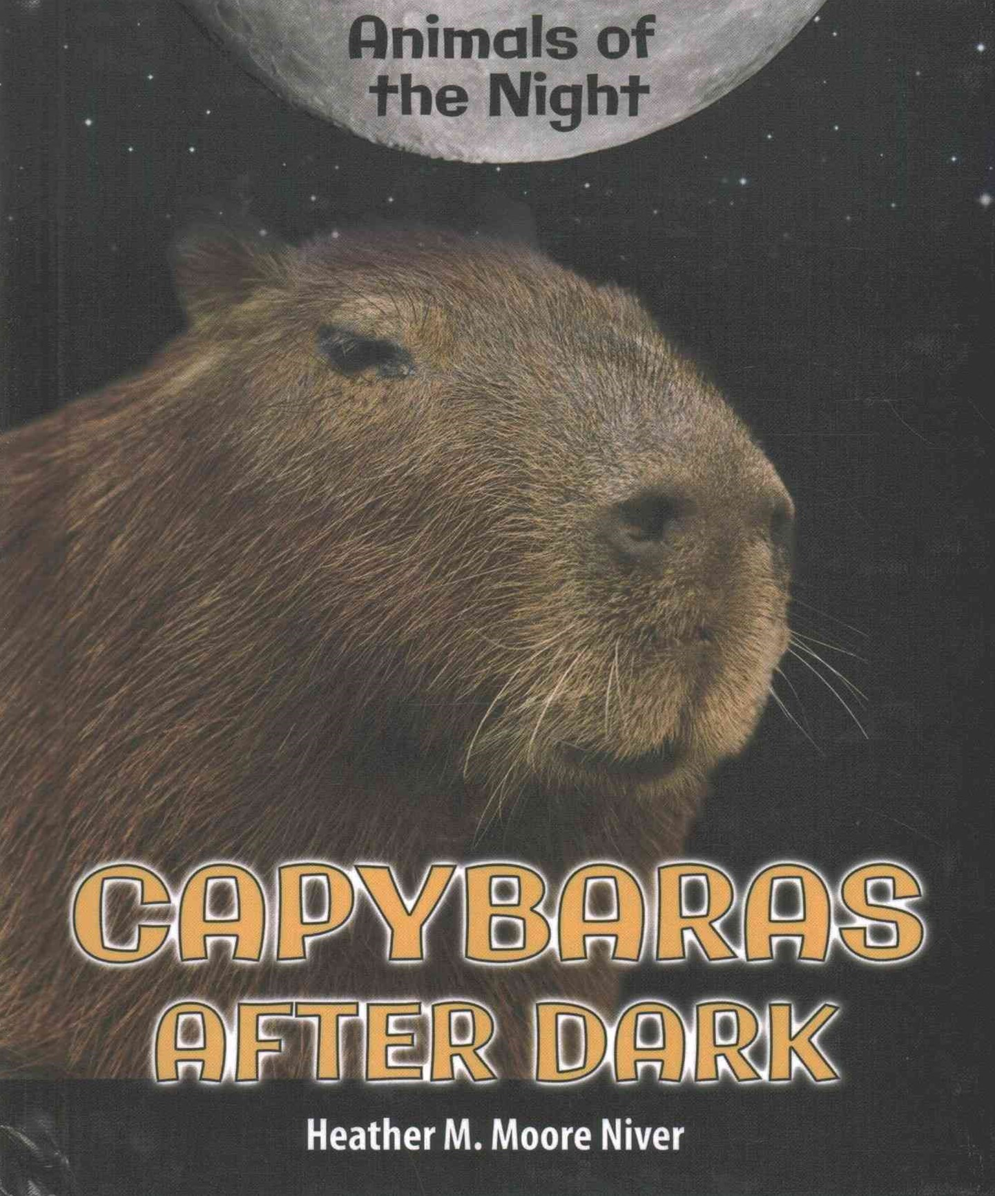 Capybaras after Dark