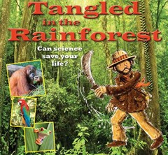 Tangled in the Rain Forest