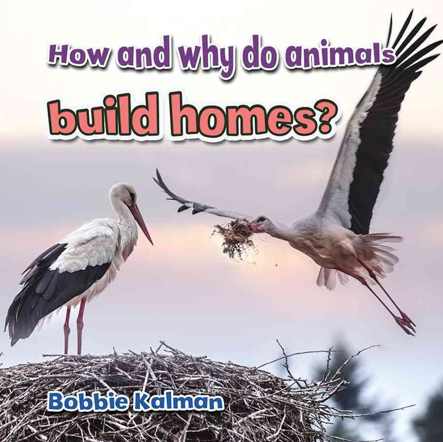 How and Why Do Animals Build Homes  - Animals Close-Up