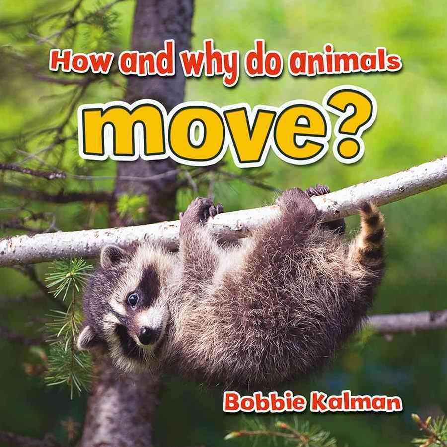 How and Why Do Animals Move?