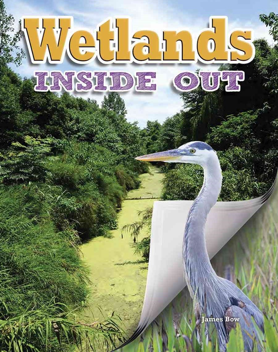 Wetlands - Ecosystems Inside Out