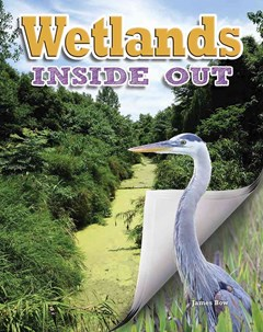 Wetlands Inside Out