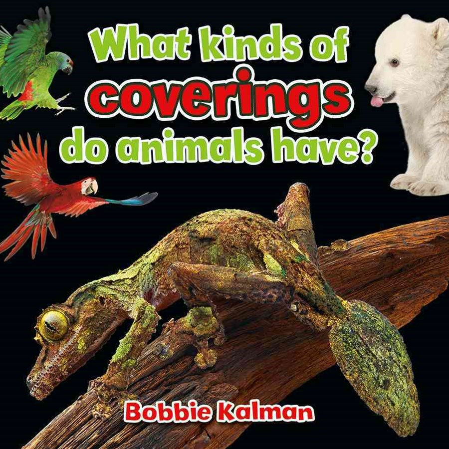 What Kind of Coverings Do Animals Have?