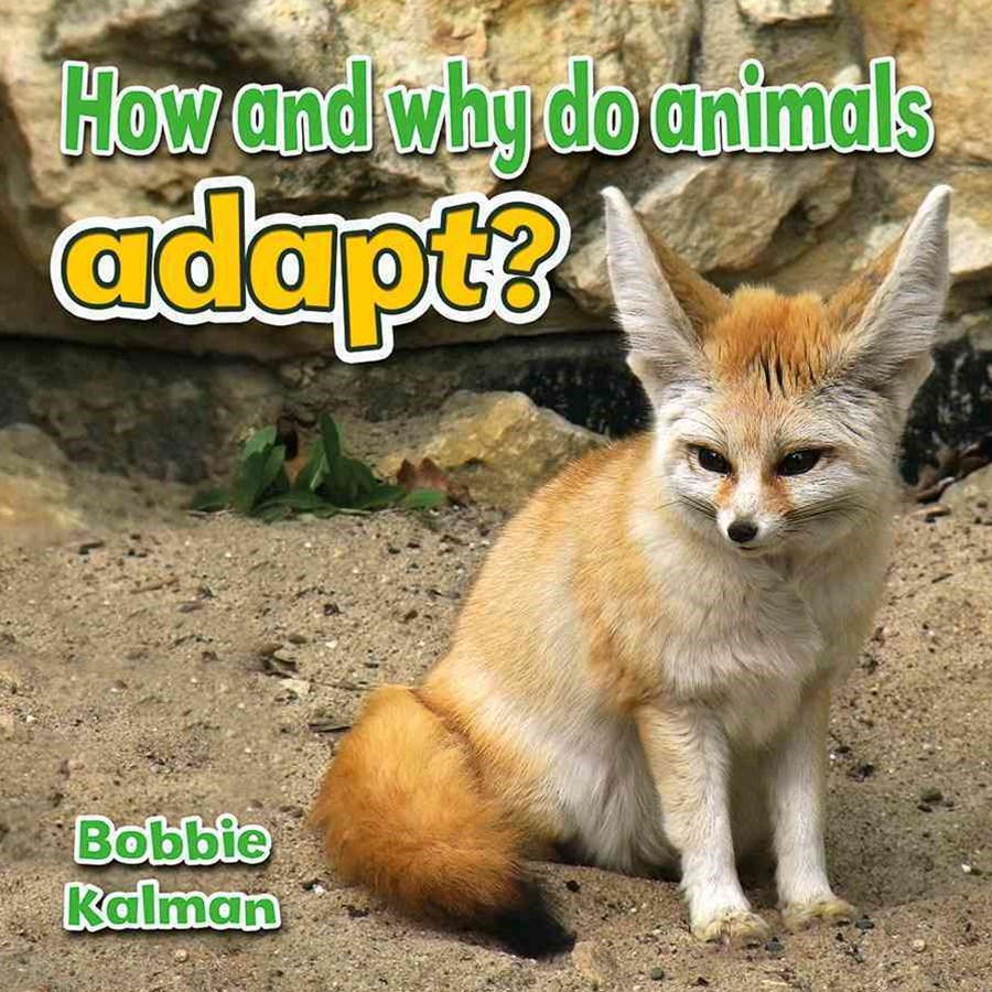 How and Why Do Animals Adapt - Animals Close-Up
