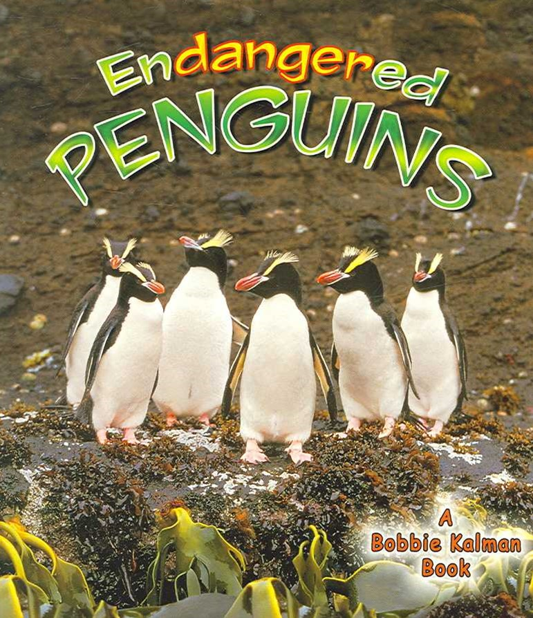 Endangered Penguins - Earths Endangered Animals