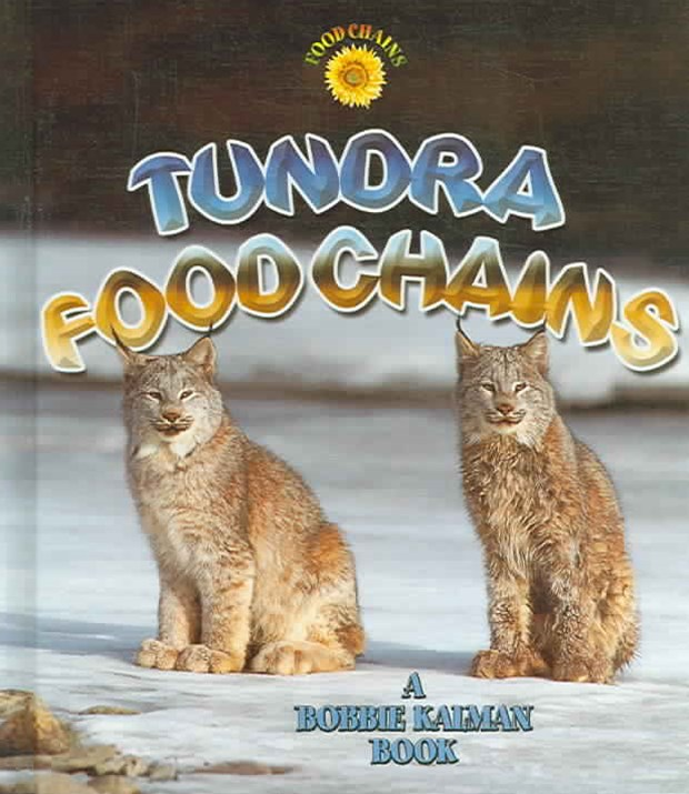 Tundra Food Chains