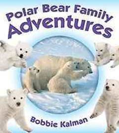Polar Bear Family Adventures