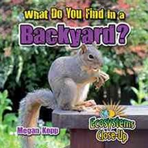 What Do You Find in a Backyard?