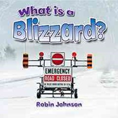 What Is a Blizzard?