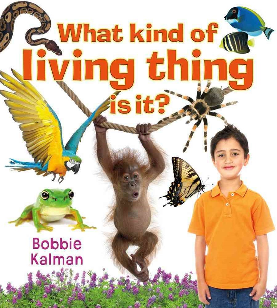 What kind of living thing is it? - Introducing Living Things