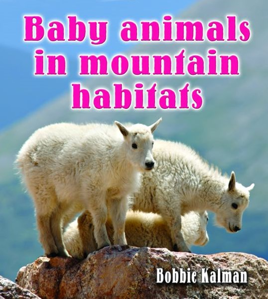 Baby Animals in Mountain Habitats