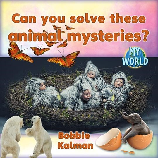Can You Solve These Animal Mysteries? - My World