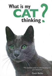 What Is My Cat Thinking? by Gwen Bailey (9780785834304) - HardCover - Pets & Nature Domestic animals