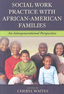 Social Work Practice with African American Families by Cheryl Waites (9780789033925) - PaperBack - History