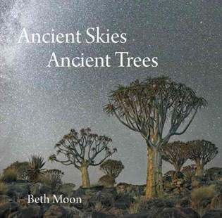 Ancient Skies, Ancient Trees by MOON BETH, Jana Grcevich, Clark Strand (9780789212672) - HardCover - Art & Architecture Photography - Pictorial