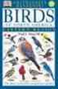 Birds of North America by Fred J. Alsop (9780789471567) - PaperBack - Pets & Nature Birds