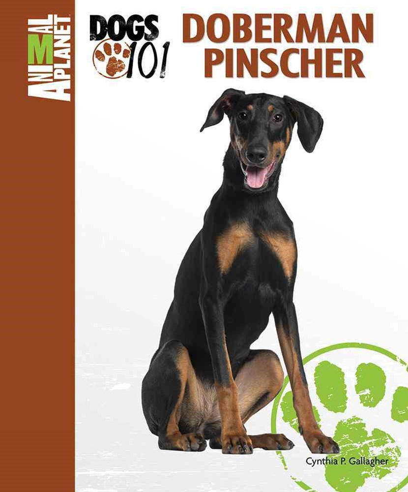 Doberman Pinscher Animal Planet