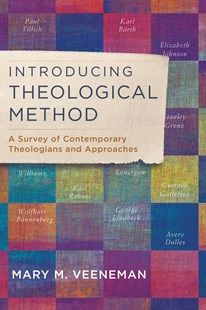 Introducing Theological Method by Mary M Veeneman (9780801049491) - PaperBack - Religion & Spirituality Christianity