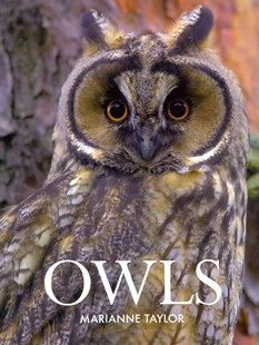 Owls by M. Taylor, Marianne Taylor (9780801451812) - HardCover - Pets & Nature Birds