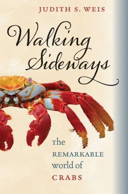 (ebook) Walking Sideways