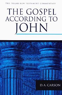 The Gospel according to John by D. A. Carson (9780802836830) - HardCover - Religion & Spirituality Christianity
