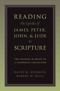 Reading the Epistles of James, Peter, John, and Jude As Scripture by David R. Nienhuis, Robert W. Wall (9780802865915) - PaperBack - Religion & Spirituality Christianity