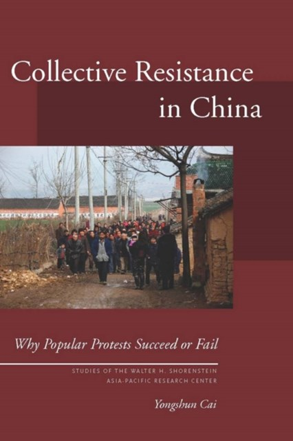 Collective Resistance in China