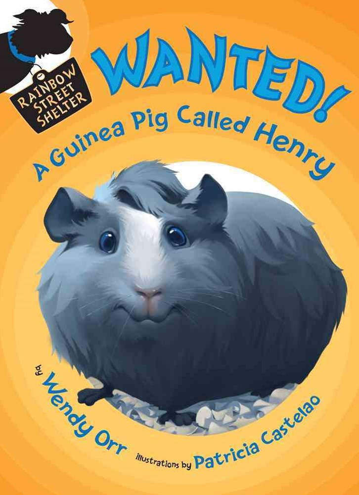 Wanted! - A Guinea Pig Called Henry