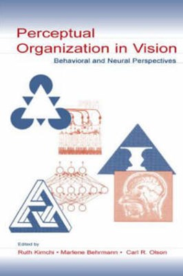 Perceptual Organization in Vision