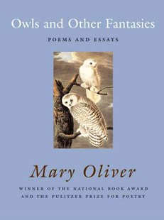 Owls and Other Fantasies by Mary Oliver (9780807068755) - PaperBack - Modern & Contemporary Fiction Literature