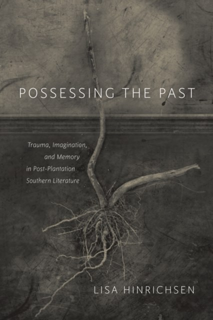 Possessing the Past