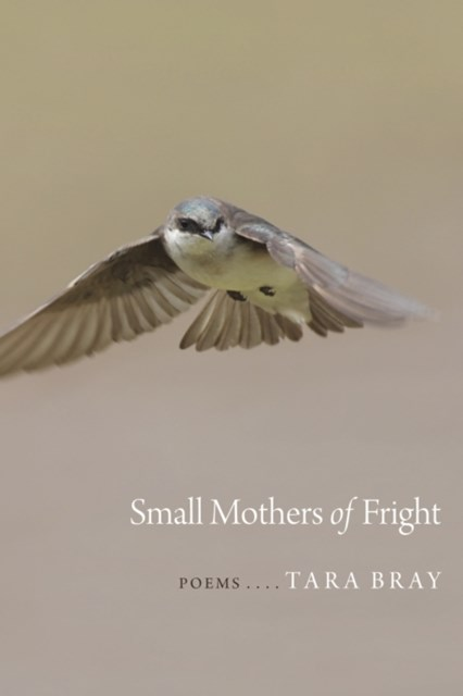 (ebook) Small Mothers of Fright