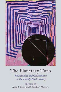 Planetary Turn by Amy J. Elias, Christian Moraru (9780810130753) - PaperBack - Art & Architecture Art Technique